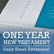 One Year New Testament